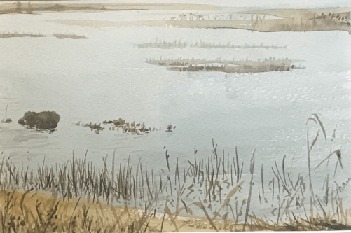 Forsythe Marsh
