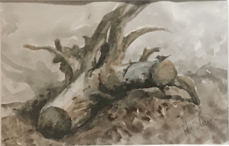 """Roots, 8""""x5"""""""